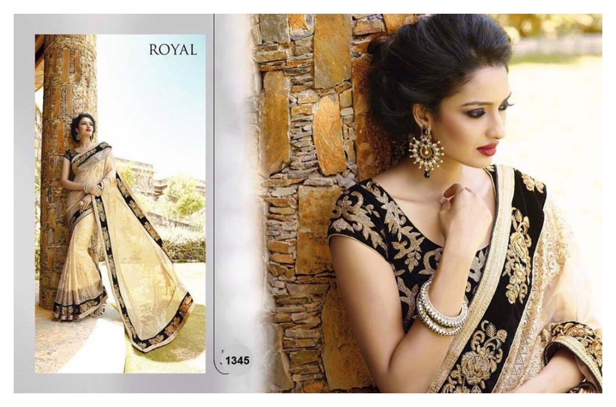 Indian Hot Saree Designs for Women